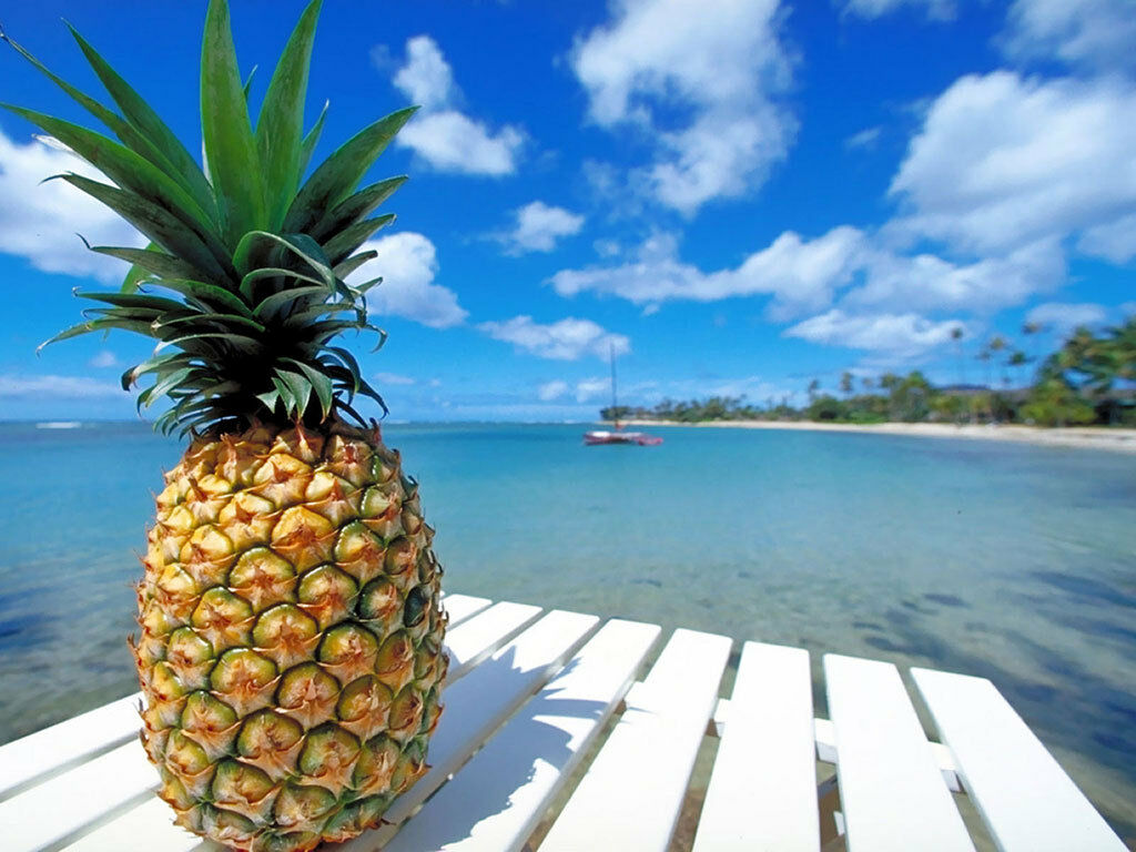urban-pineapple