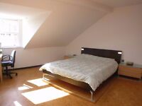 *DBL ROOM FOR SINGLE USE ULTRA CHEAP 15 MIN TO BANK! INCREDIBLE BUT TRUE!@
