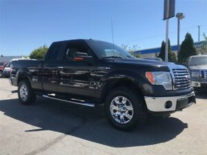 2010 Ford F-150 XLT XTR 4X4 Chrome Package Only 164,000KM