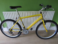 MENS MOUNTAIN BIKE, RALEIGH MAX, GOOD CONDITION FULLY WORKING, READY TO RIDE.