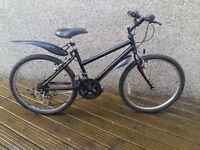 Bike - kids age 8-10