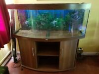 Juwel Vision 450 in beech used aquarium with external filter and heater in good condition