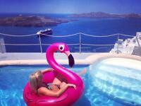 Pink flamingo float