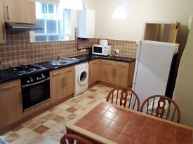 BEAUTIFUL 1BED FLAT WITH FIREPLACE AND BIG PATIO