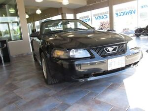 2002 Ford Mustang Crusie - Power Pkg