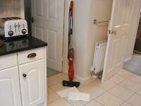 Red Steam Mop