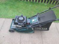 Hayter Harrier 41 Auto Drive