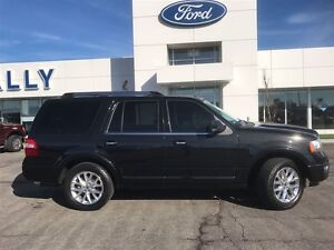 2015 Ford Expedition Limited, DVD, Nav, 8 passenger! Windsor Region Ontario image 4