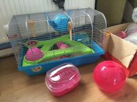 Hamster cage, toys and other accessories