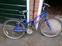 Blue Raleigh mountain bicycle 17inch frame inc mudguards, stand and brand new tyres
