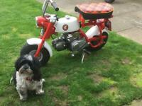Honda Z50m 1967 stunning for sale  Urmston, Manchester