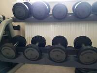 Techno Gym commercial grade dumbell rack