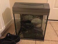 Tetra fish tank, pump and accessories