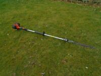 echo petrol long reach hedge cutter
