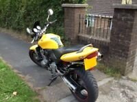 Honda Hornet CB600 Yellow Excellent condition