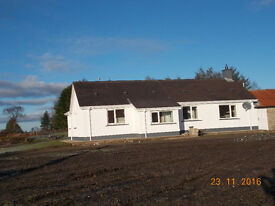 TO LET - Detached Bungalow - 3 Bed, DONEMANA