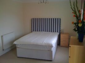 Beautiful Large Double Room with Ensuite bathroom - Fully Furnished - All bills included