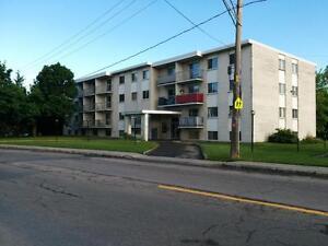 Ste-Foy libre 4 1/2 tout inclus 155$ de rabais Québec City Québec image 6