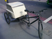 tricycle rickshaw for sale quick sale