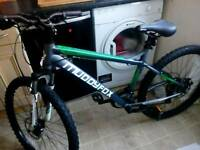 Muddy fox mountain bike not kids bike . Adult bike
