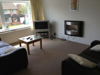 Massive double room with sofa All bills included 4 Bedroom 2 bath house share in Heald Green SK83HA