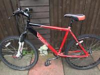 6 bikes