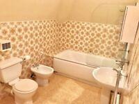 Full bathroom suite - bath, toilet, sink, bidet, mirror cabinet plus accessories