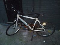 2X bikes for sale 40f each ,very good condition:)