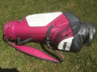 Daiwo golf bag Wilson Clubs