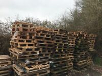 Free Pallets for the Community