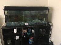 160 litre tank and stand
