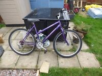 2 Bikes one Gents the other Ladies, need TLC and will need new inner tubes, everything works