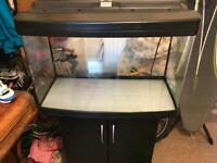 3 fish tanks, lights, filters and pump for sale.