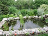 LOOKING FOR SOMEONE TO BUILD ME THIS POND
