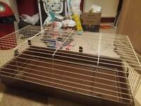 Rabbit cage + extras