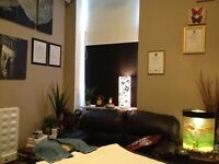 MALE MASSEUR, DEEP TISSUE, SWEDISH, FULL BODY MASSAGE, CENTRAL LONDON GAY FRIENDLY THERAPIST