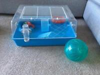Hamster cage with accessories, ball, wheel, food bowl.