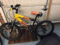Raleigh Bike suits 4 to 8 years old (flat tyres)