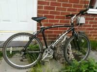 Saracen Indiana 26 inch wheel Beach Cruiser Mountain Bike bicycle like Carrera GT Giant Scott £30