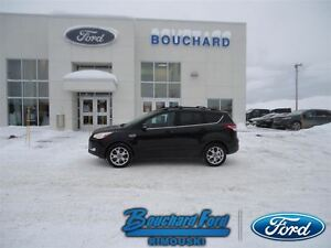 2013 Ford Escape 2L AWD SEL