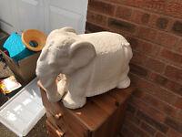 Nice big Elephant