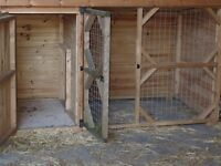 Kennel with integrated run