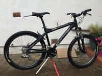 Pace RC303 Mountain Bike