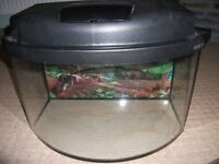 small fish tank