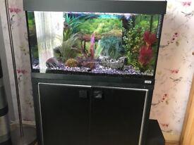 Fluval Roma 125 aquarium and cabinet set