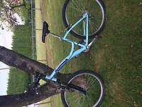 21 Speed Diamondback Mountain Bike