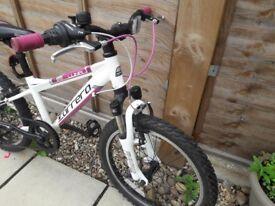 Carerra Luna 20 Girls Bike