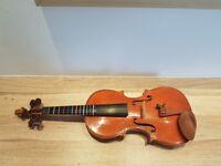 Violin Stentor graduate