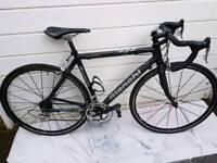 Bianchi XL Carbon 52cm