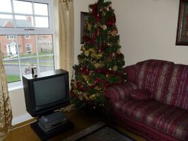 7.5ft Christmas Tree - Artificial Scots Pine